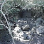 敷地内を流れる水無川の様子01
