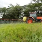 草地改良(除草剤散布)2